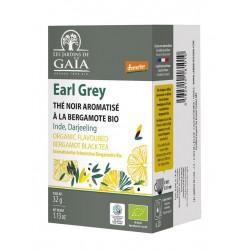 Curcuma Gingembre / 20 infusettes