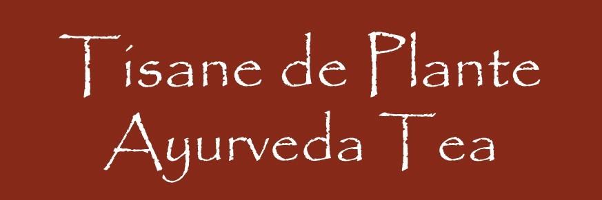 Ayurveda Tea Bio