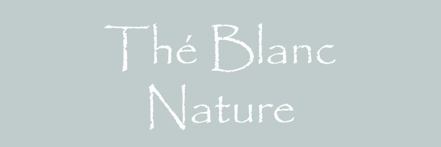 Thé blanc nature Bio