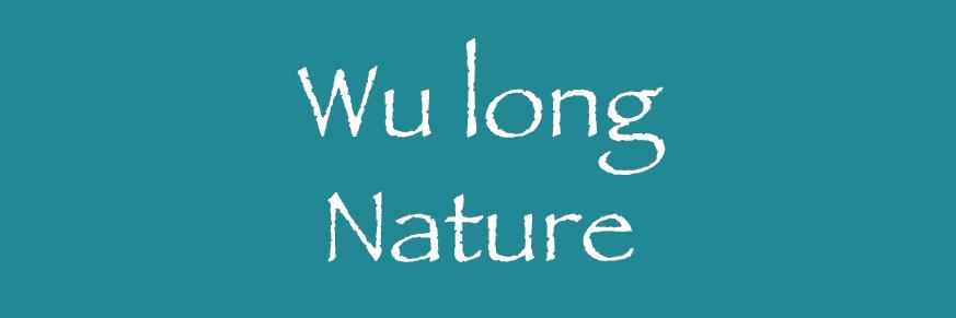 Wu Long aromatisé Bio