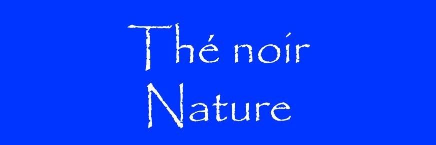 Thé noir nature Bio